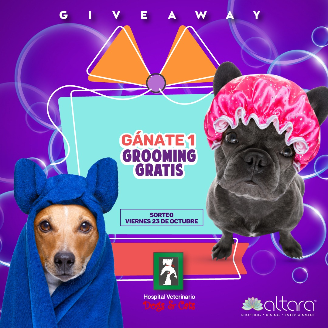 Dogs and Cat´s Giveaway!